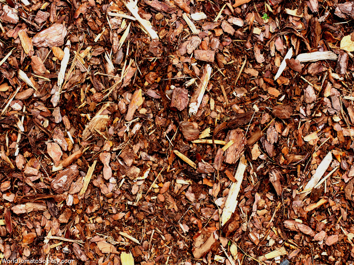 ARTICLE Gardening With Clay Soil Mulch Edit